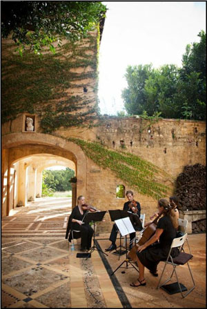Byron Bay Wedding with Byron String Quartet at Deux Belettes