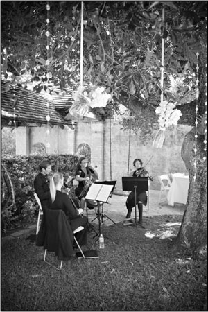Byron Bay Outdoor Wedding with Byron String Quartet