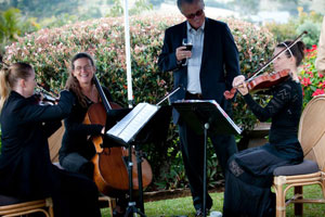 Byron String Quartet Wedding Marquee - courtesy Grant McIntyre
